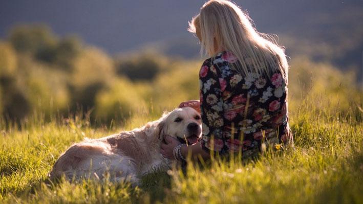 Hundreisen.de – Die Seite für den Urlaub mit Hund